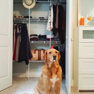 Minimalist wardrobe and a cute puppy